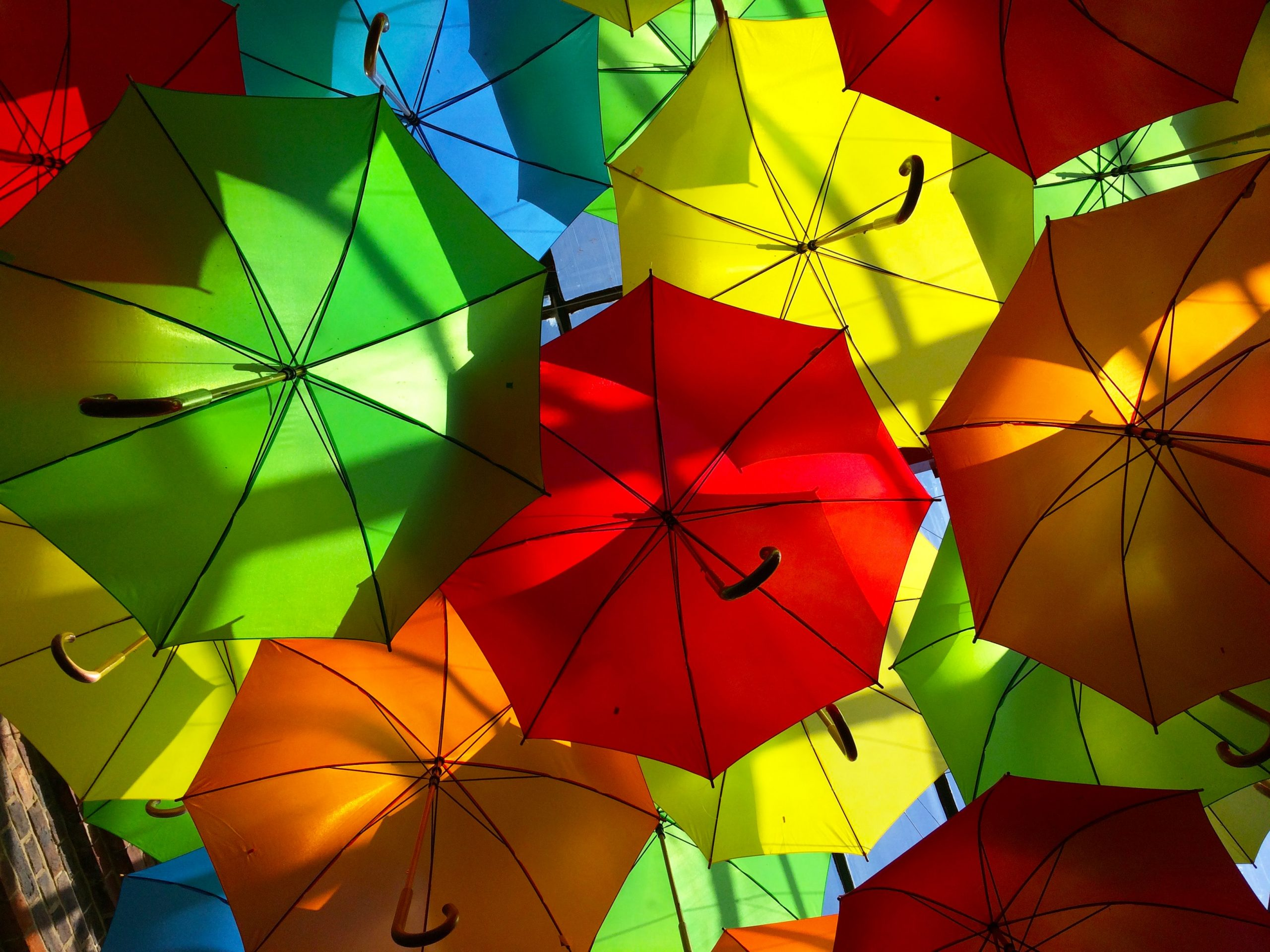 colourful umbrellas as a symbol for cybersecurity and fraud prevention