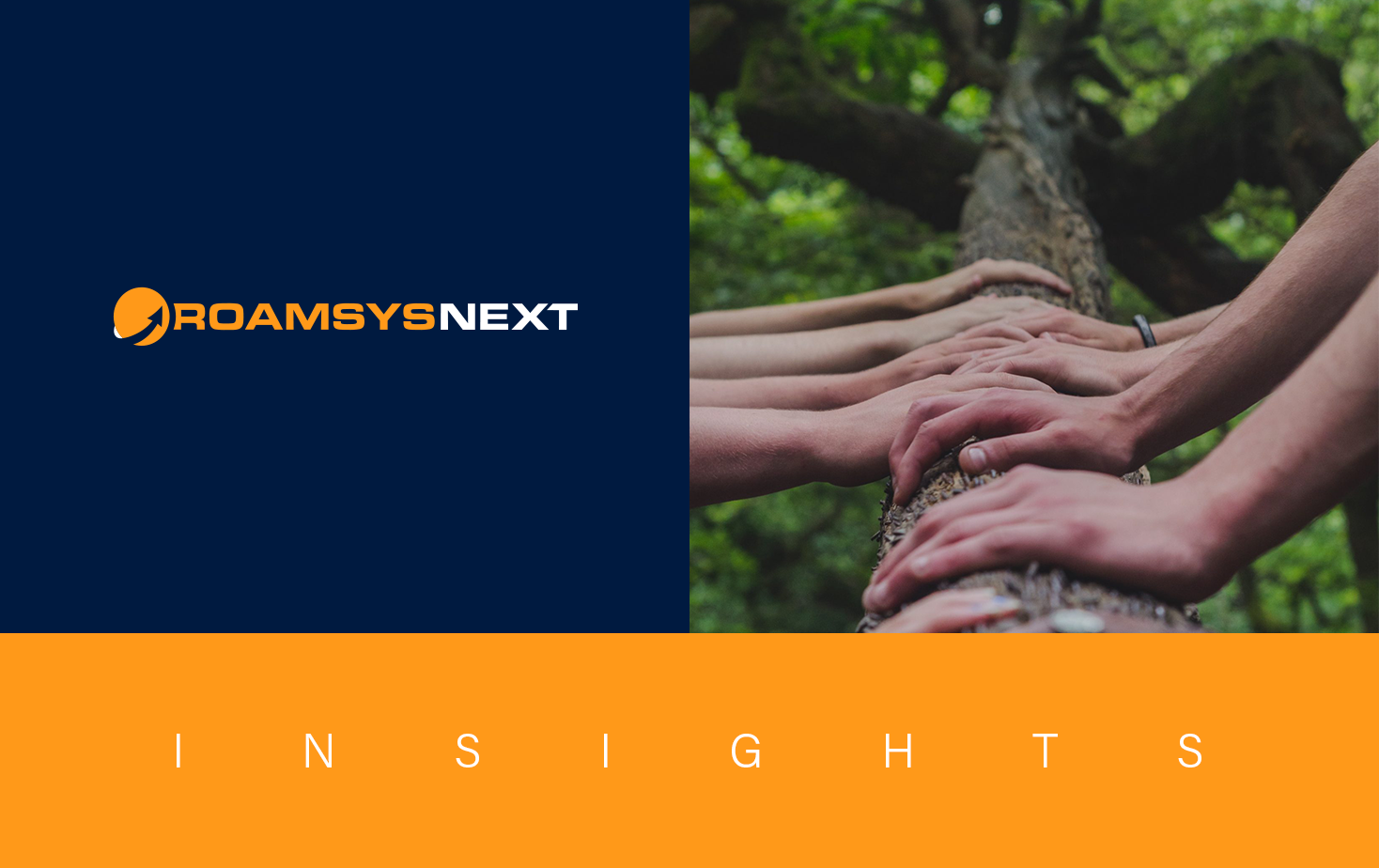 RoamsysNext Insights 16